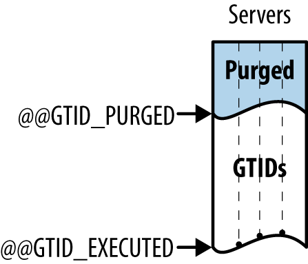 GTID_EXECUTED-and-GTID_PURGED